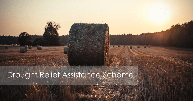 Drought Relief Assistance Scheme