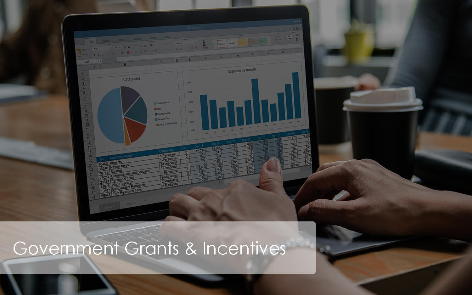 Government Grants & Incentives